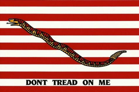 A Gadsden flag 2