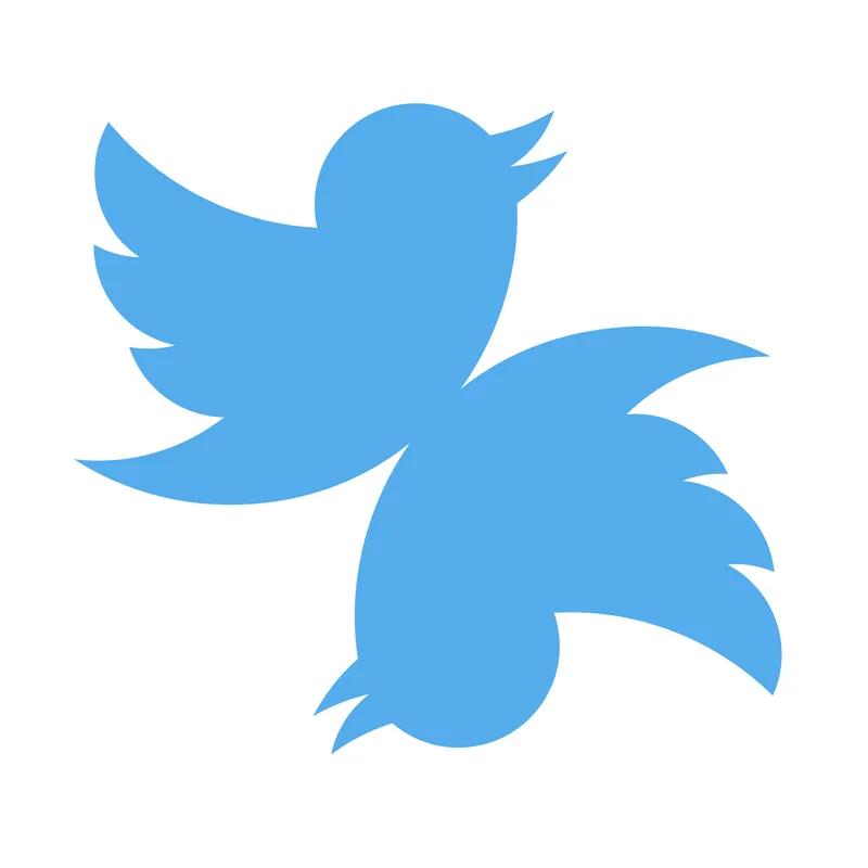 Multiple Twitter