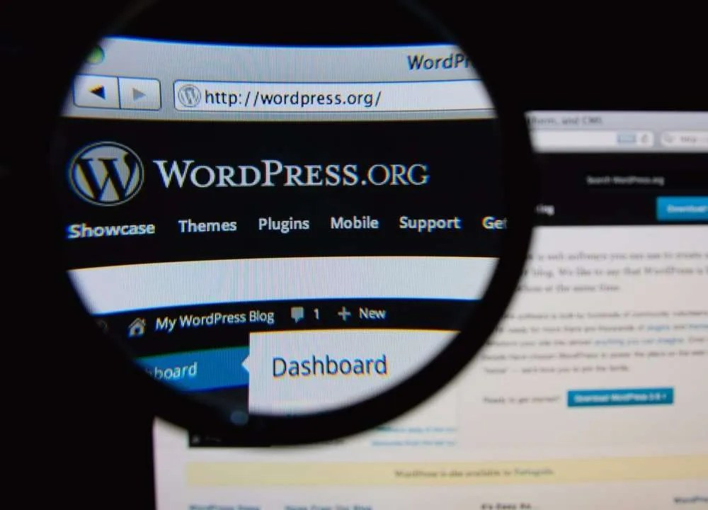 WordPress Website Image