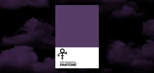 Pantone reference