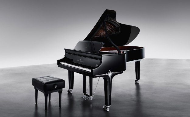The Black Diamond Model D