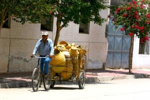 Bike Cafayate Baskets