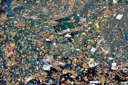 Boca River Pollution