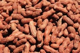 Copacabana Peanuts