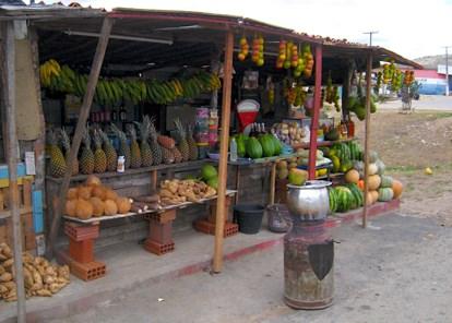 Fruit Stand2Canoa