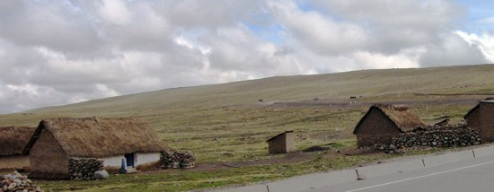 Pampas Community