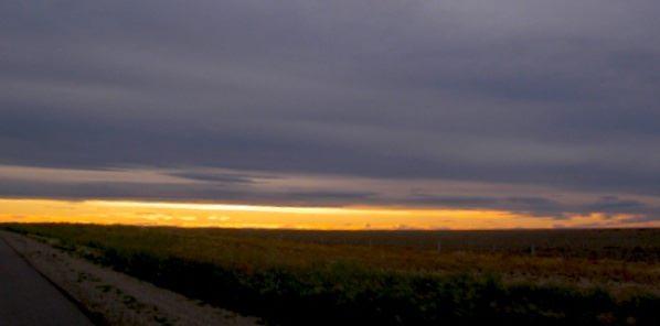 Pampas Sunset
