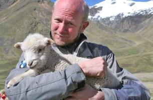 Worldrider Sheep
