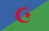 Algiers flag
