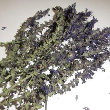 Salvia Nemerosa (Nemerosa Sage) Organic Flowers