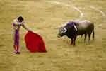 Spanish matador fights bull