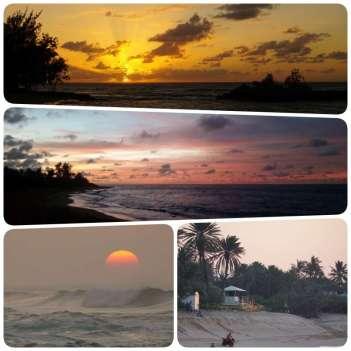 collage-sunset06
