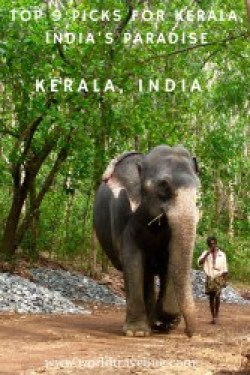 "Kerala is the most southern state of India and it is also called ""God's own country"". Once you get there, you will immediately understand why. #kerala #india #southindia #godsowncountry"