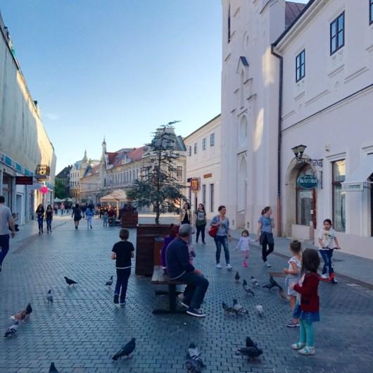 Oradea 13