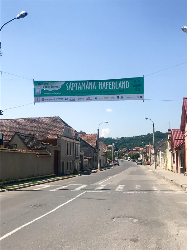 Transylvania Haferland-3