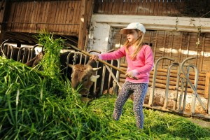 Hegelbach Organic Farm - @World Travel Mama