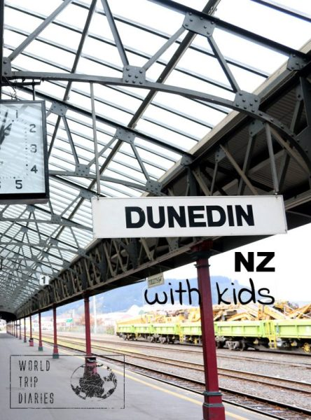 Dunedin is a popular destination in NZ's South Island and we've been there with kids. Click to read more!