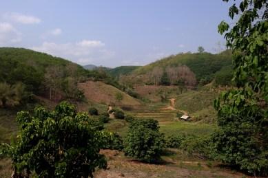 Chiang Rai - www.worldtrips.fr