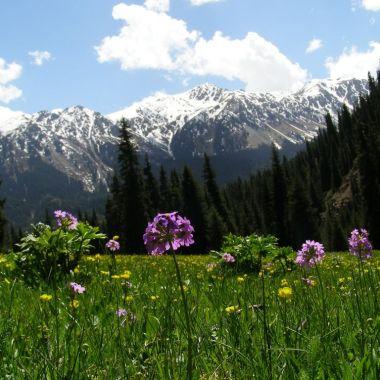 Kyrgyzstan trekking, Central Asia
