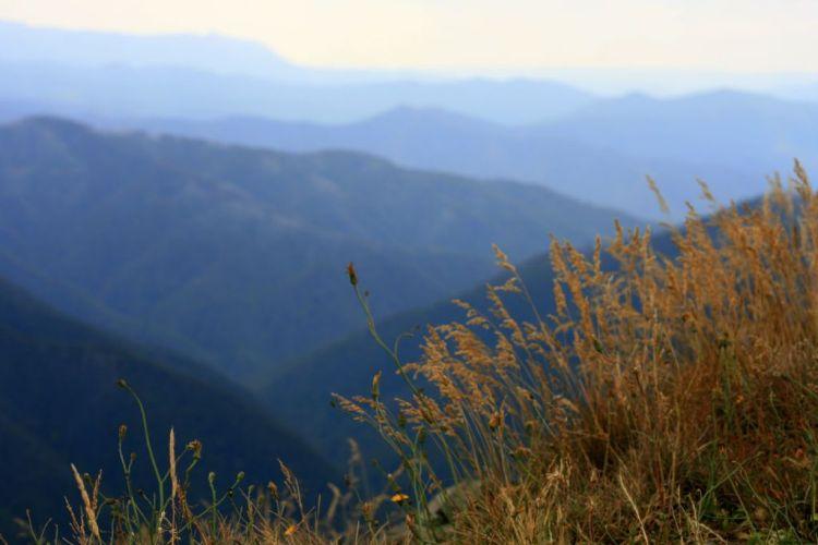 The Great Alpine Road, Australia