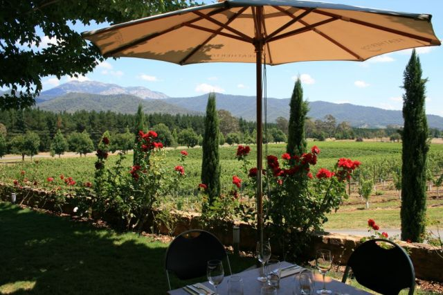 Boynton's Feathertop vineyard