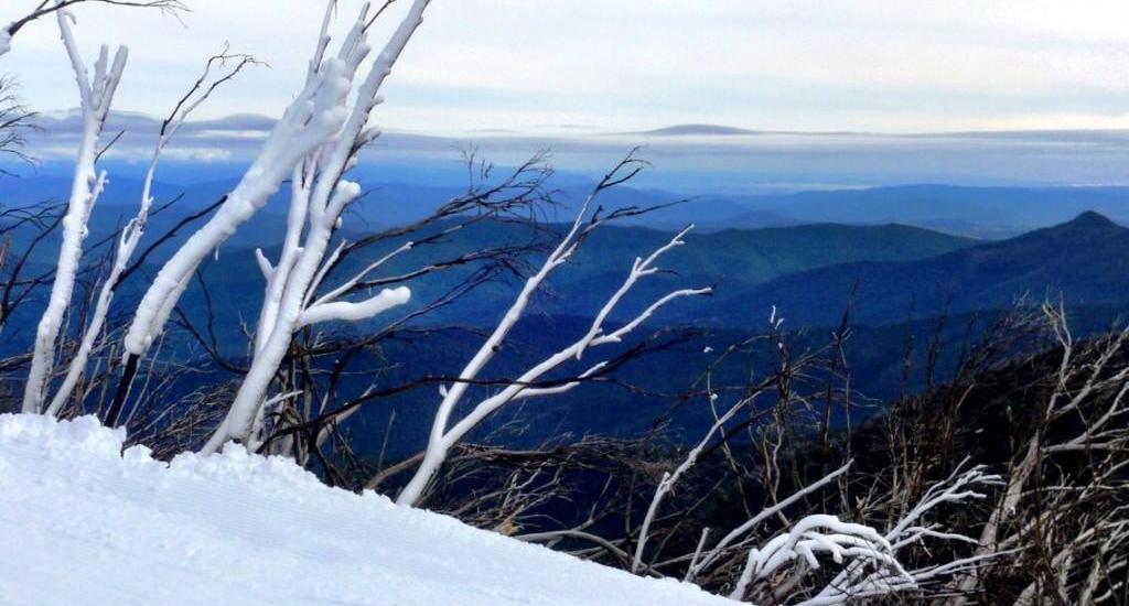Mt Buller scenery Victoria Australia