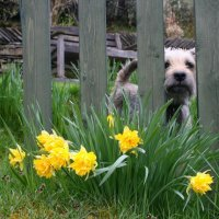 Spring holiday ideas in the south west of England