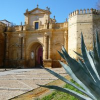 Spain: Wandering in Andalusia's Carmona