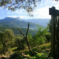 Exploring the Valley of Oranges in Soller, Mallorca