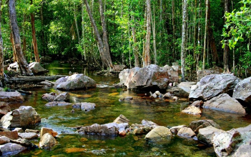 Florence creek, Litchfield National Park, Australia