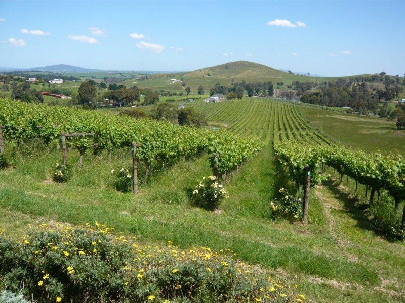 Yarra Valley winery Victoria Australia