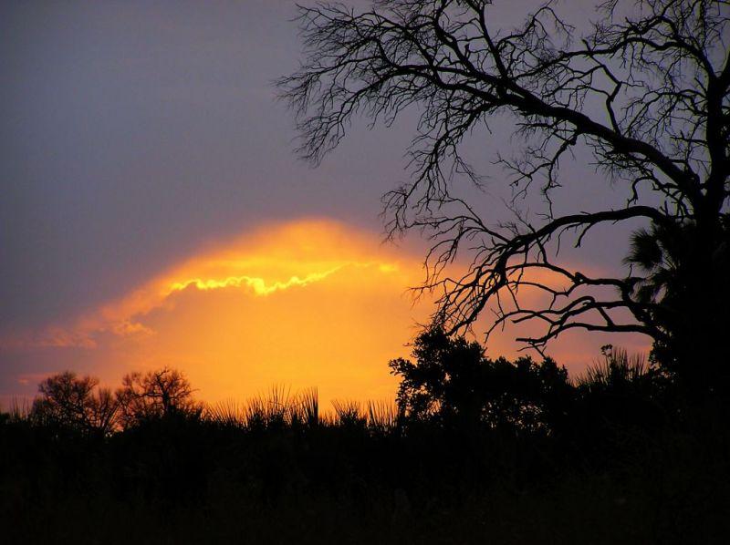 Sunset in the Okavango Delta, Botswana
