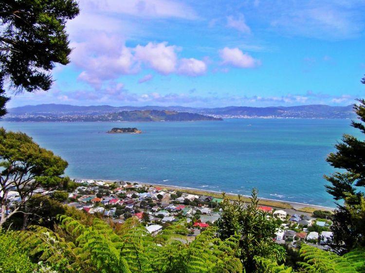 Wellington harbour view in New Zealand