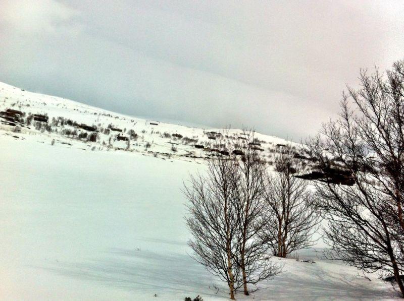 Oslo to Bergen train in Spring, Norway