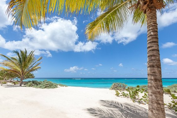 Shoal Beach, Anguilla