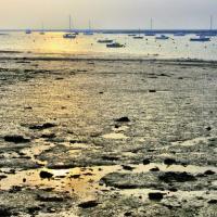 England: Wandering Mersea Island