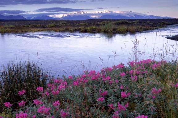 skaftafell-eyrarros Image via Iceland Tourism