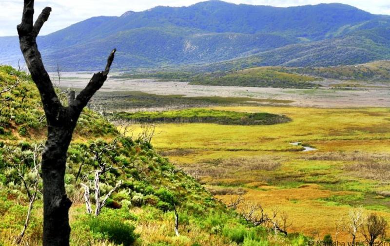 Mt Oberon Views Wilsons Promontory Victoria Australia