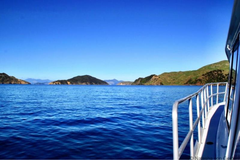 Boating in the Marlborough Sounds New Zealand