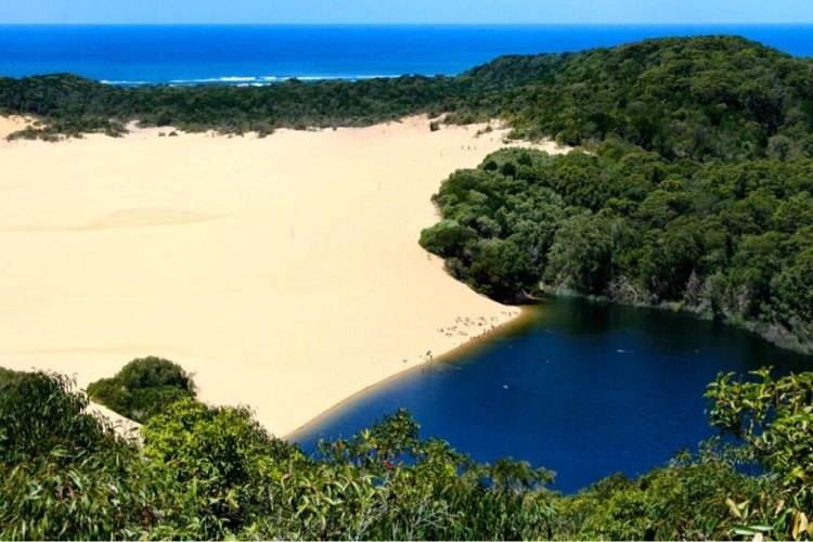Lake Wabby barrage lake on Fraser Island Australia