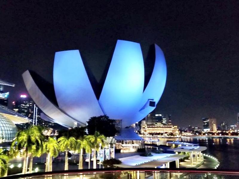 Lotus Flower Singapore Museum