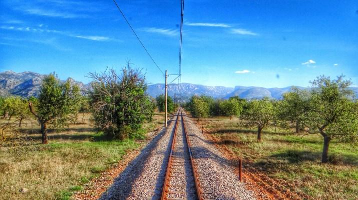 tren Soller train