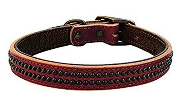 Weaver dog collar havana