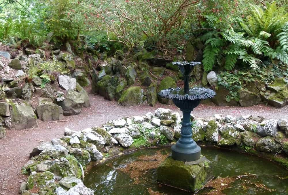 Fernery at Greenway, Devon