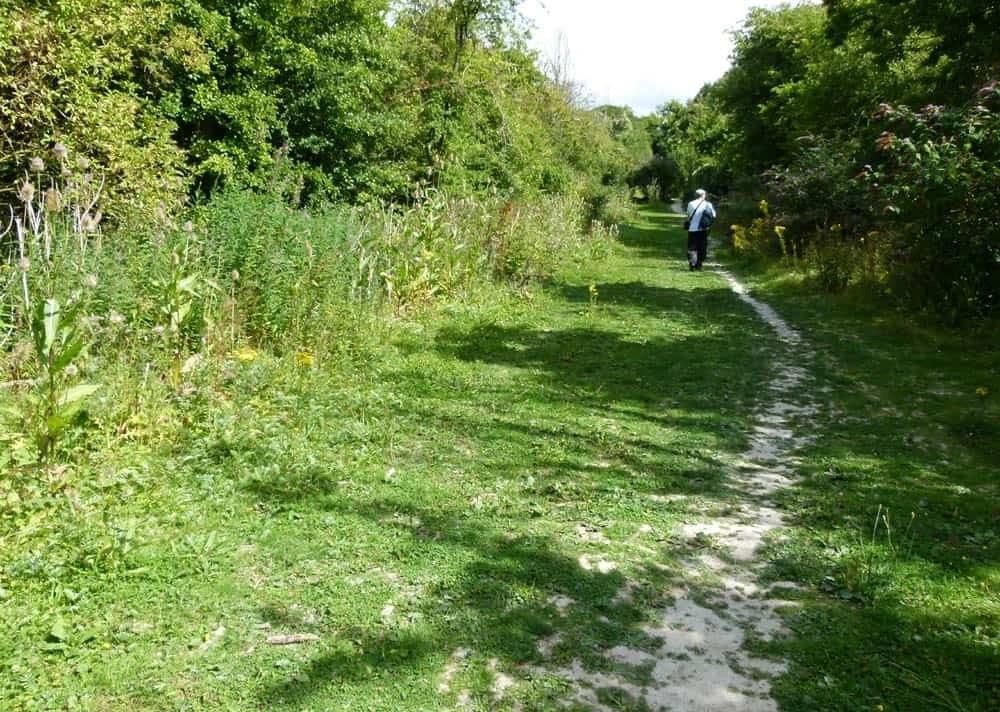 Ridgeway Path