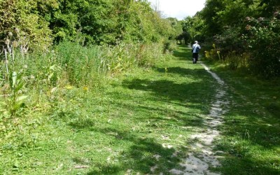 Walking in the Steps of our Ancestors on England's Ridgeway Path