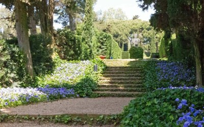 Nature and Harmony in Lloret de Mar's Santa Clotilde Gardens