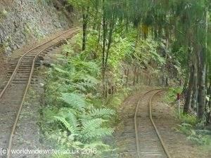 Driving Creek Railway, Coromandel
