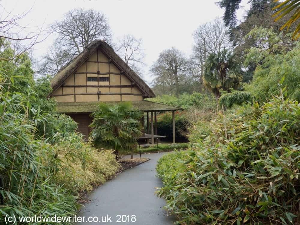Bamboo Garden, Kew Gardens