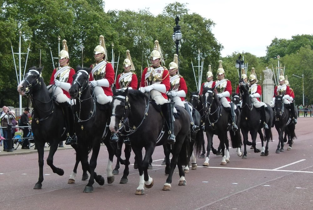 Visiting the Queen's Horses at the Royal Mews, London